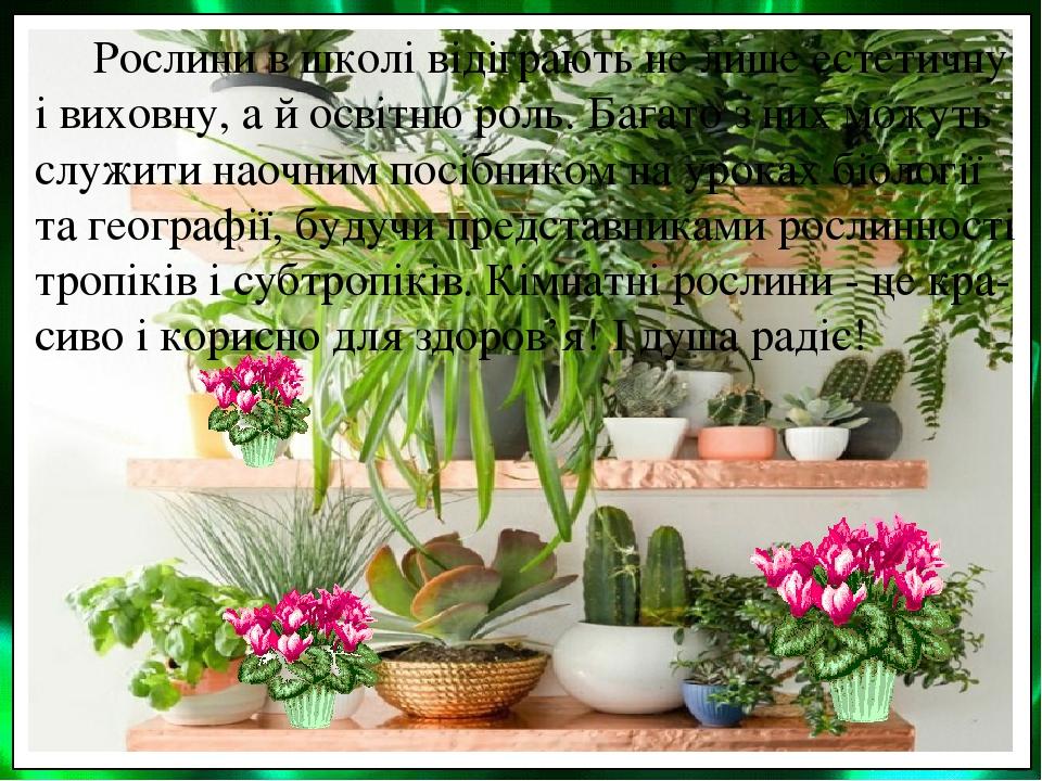 Рослини в школі відіграють не лише естетичну і виховну, а й освітню роль. Багато з них можуть служити наочним посібником на уроках біології та геог...