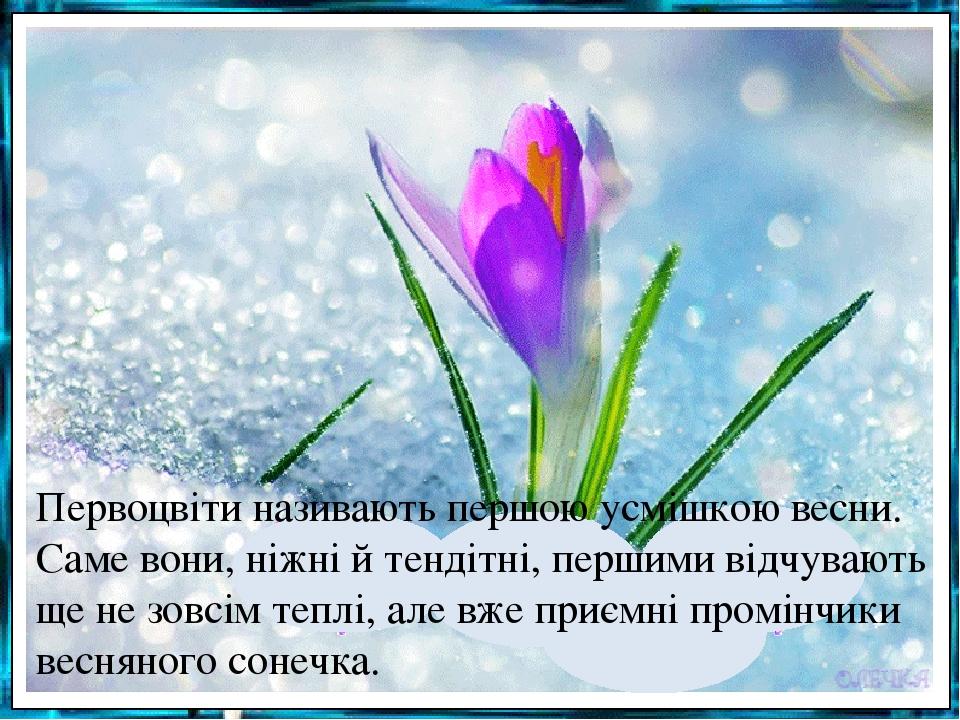 Первоцвіти називають першою усмішкою весни. Саме вони, ніжні й тендітні, першими відчувають ще не зовсім теплі, але вже приємні промінчики весняног...
