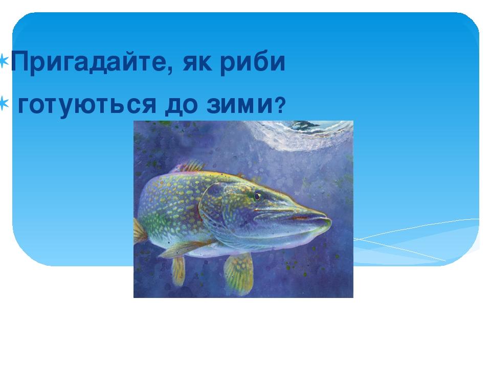 Пригадайте, як риби готуються до зими?