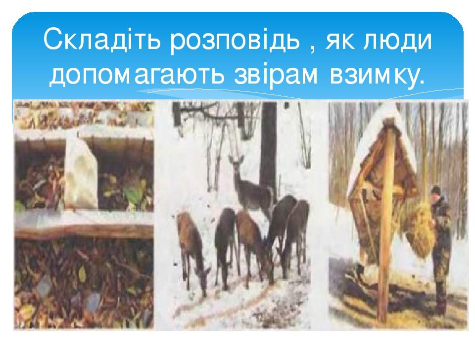 Складіть розповідь , як люди допомагають звірам взимку.