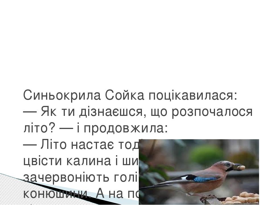 Синьокрила Сойка поцікавилася: — Як ти дізнаєшся, що розпочалося літо? — і продовжила: — Літо настає тоді, коли починають цвісти калина і шипшина, ...