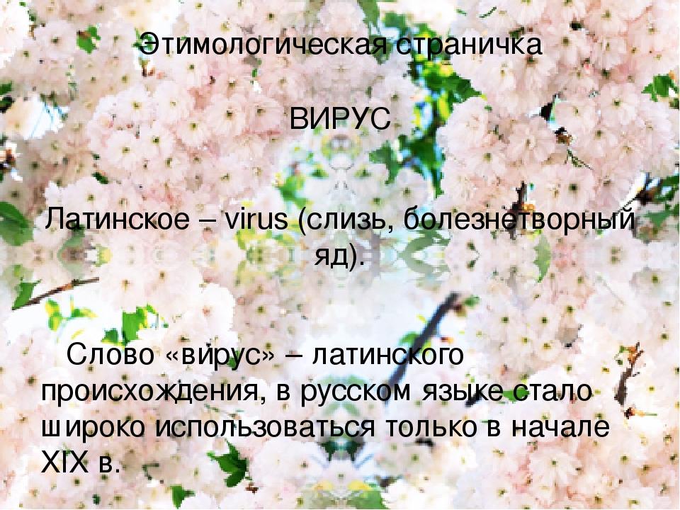 Этимологическая страничка ВИРУС Латинское – virus (слизь, болезнетворный яд). Слово «вирус» – латинского происхождения, в русском языке стало широк...