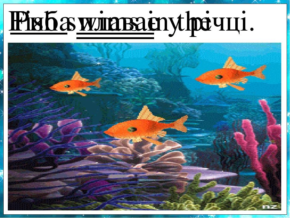 Fish swims in the river. Риба плаває у річці.