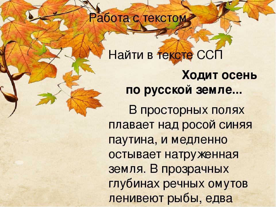 Работа с текстом Найти в тексте ССП Ходит осень по русской земле... Впросторных полях плавает над росой синяя паутина, и медленно остывает н...