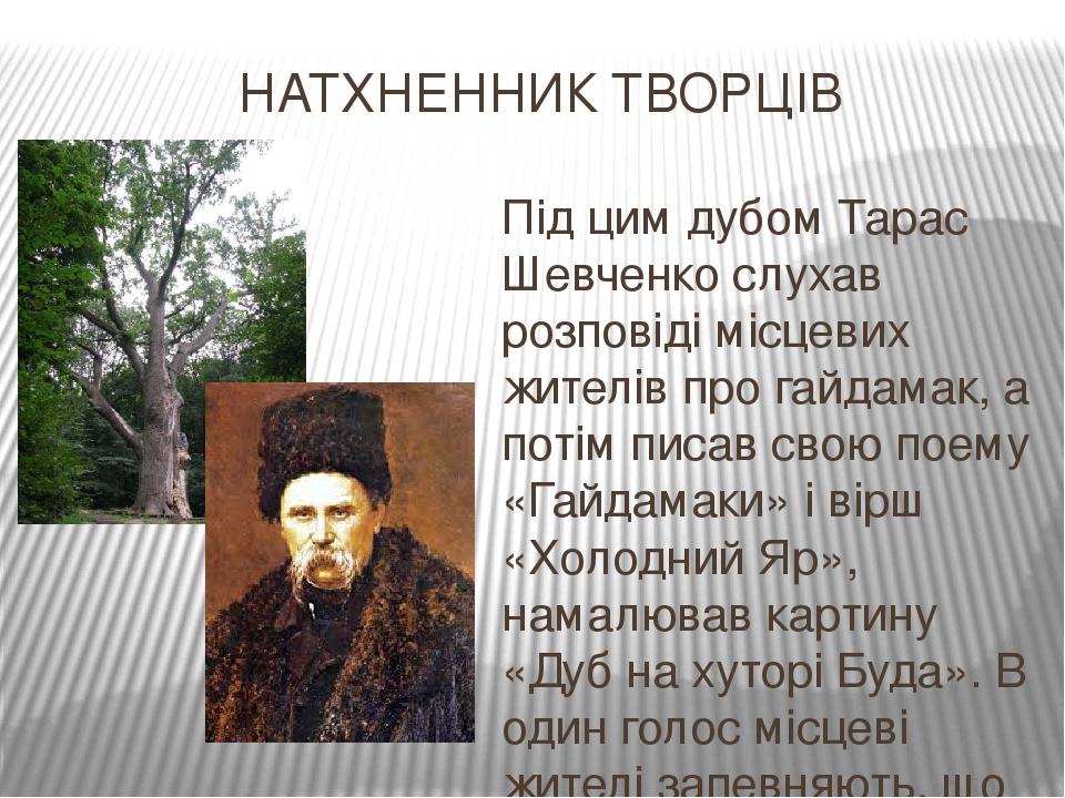 НАТХНЕННИК ТВОРЦІВ Під цим дубом Тарас Шевченко слухав розповіді місцевих жителів про гайдамак, а потім писав свою поему «Гайдамаки» і вірш «Холодн...