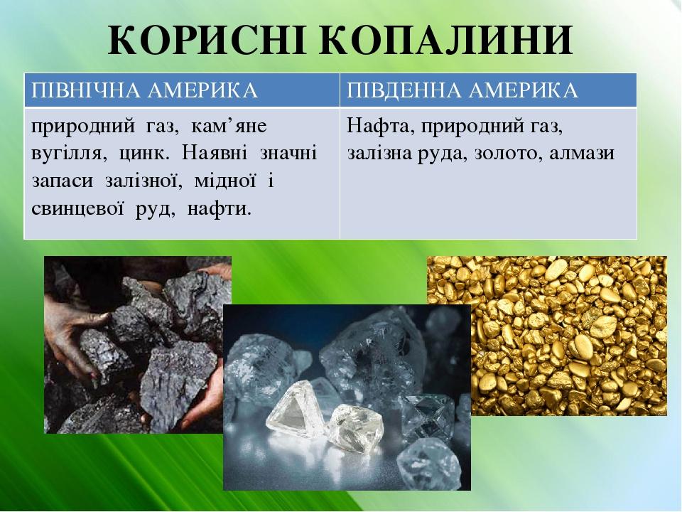 КОРИСНІ КОПАЛИНИ ПІВНІЧНААМЕРИКА ПІВДЕННА АМЕРИКА природний газ, кам'яне вугілля, цинк. Наявні значні запаси залізної, мідної і свинцевої руд, нафт...