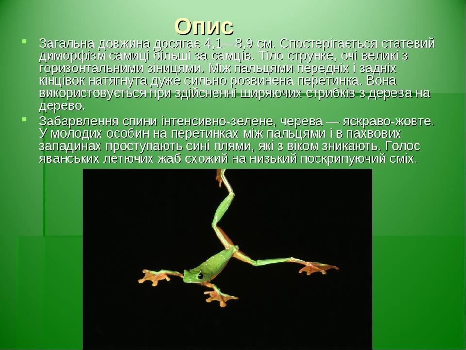 Опис Загальна довжина досягає 4,1—8,9см. Спостерігається статевий диморфізм самиці більші за самців. Тіло струнке, очі великі з горизонтальнимизі...
