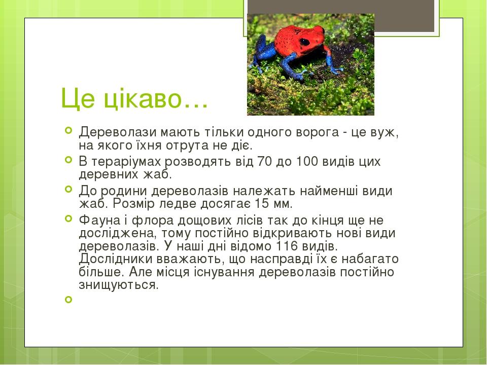 Це цікаво… Дереволази мають тільки одного ворога - це вуж, на якого їхня отрута не діє. В тераріумах розводять від 70 до 100 видів цих деревних жаб...