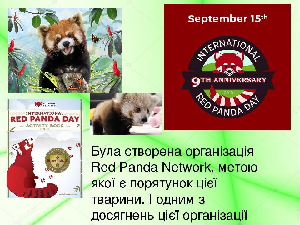 Була створена організація Red Panda Network, метою якої є порятунок цієї тварини. І одним з досягнень цієї організації став Міжнародні день панди, ...
