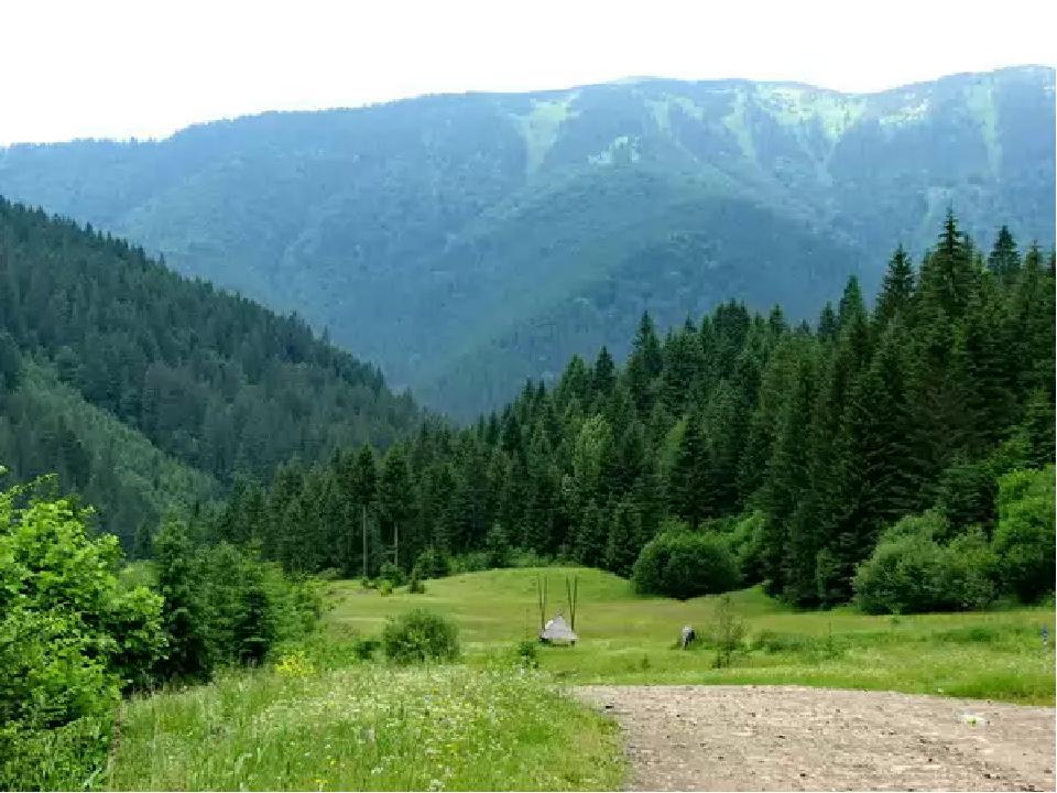 Тут мамина пісня лунає і нині, Її підхопили поля і гаї, Її вечорами по всій Україні Співають в садах солов'ї.