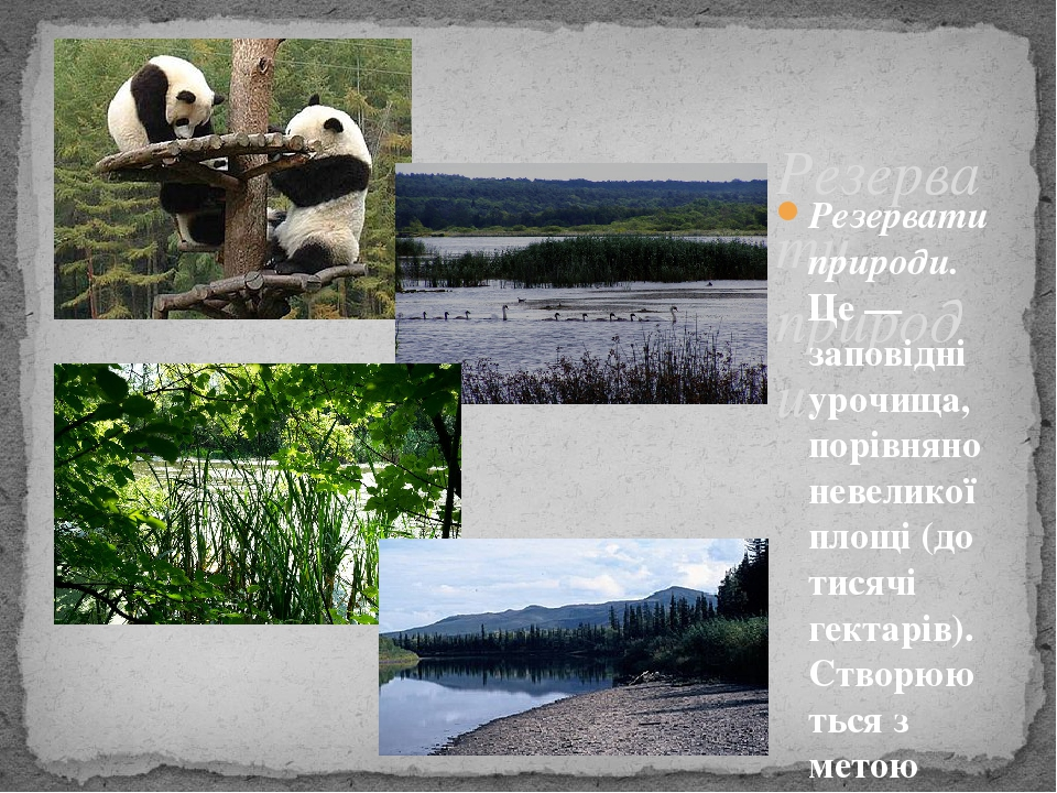 Резервати природи. Резервати природи.Це — заповідні урочища, порівняно невеликої площі (до тисячі гектарів). Створюються з метою охорони лісів, ре...