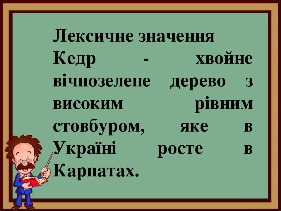 Лексичне значення Кедр - хвойне вічнозелене дерево з високим рівним стовбуром, яке в Україні росте в Карпатах.