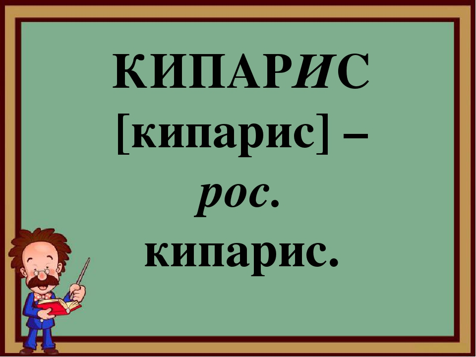 КИПАРИС [кипарис] – рос. кипарис.