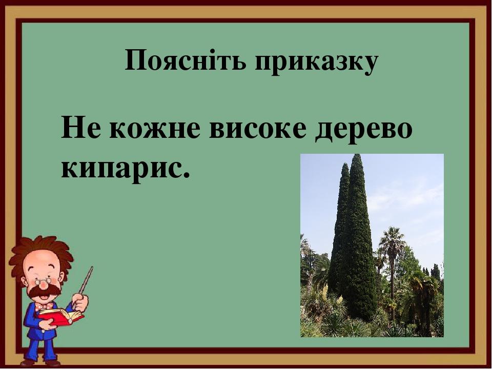 Поясніть приказку Не кожне високе дерево кипарис.