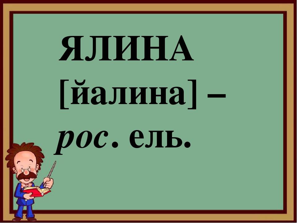 ЯЛИНА [йалина] – рос. ель.