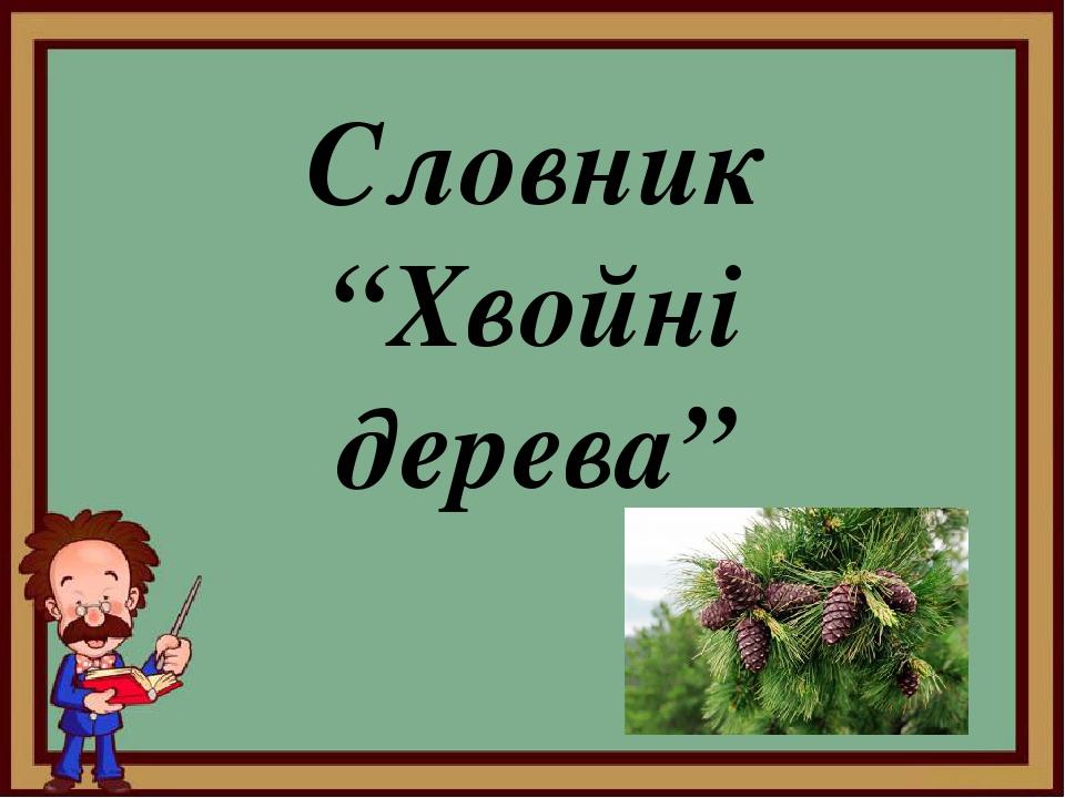 """Словник """"Хвойні дерева"""""""