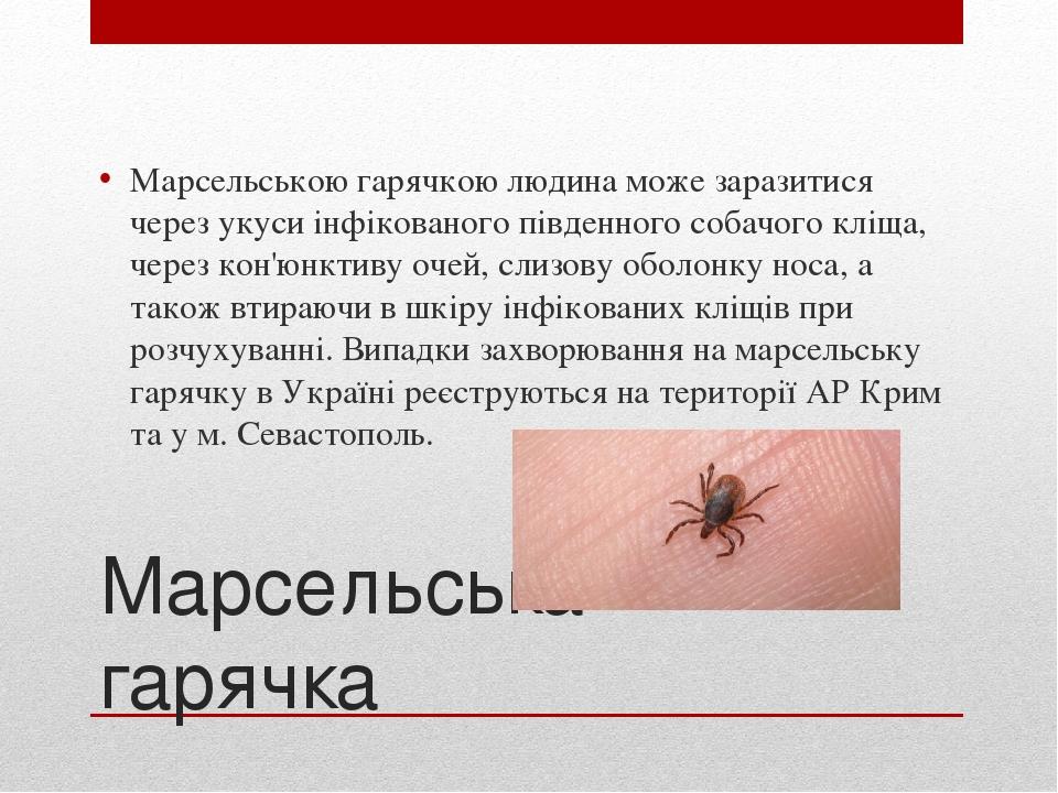 Марсельська гарячка Марсельською гарячкою людина може заразитися через укуси інфікованого південного собачого кліща, через кон'юнктиву очей, слизов...