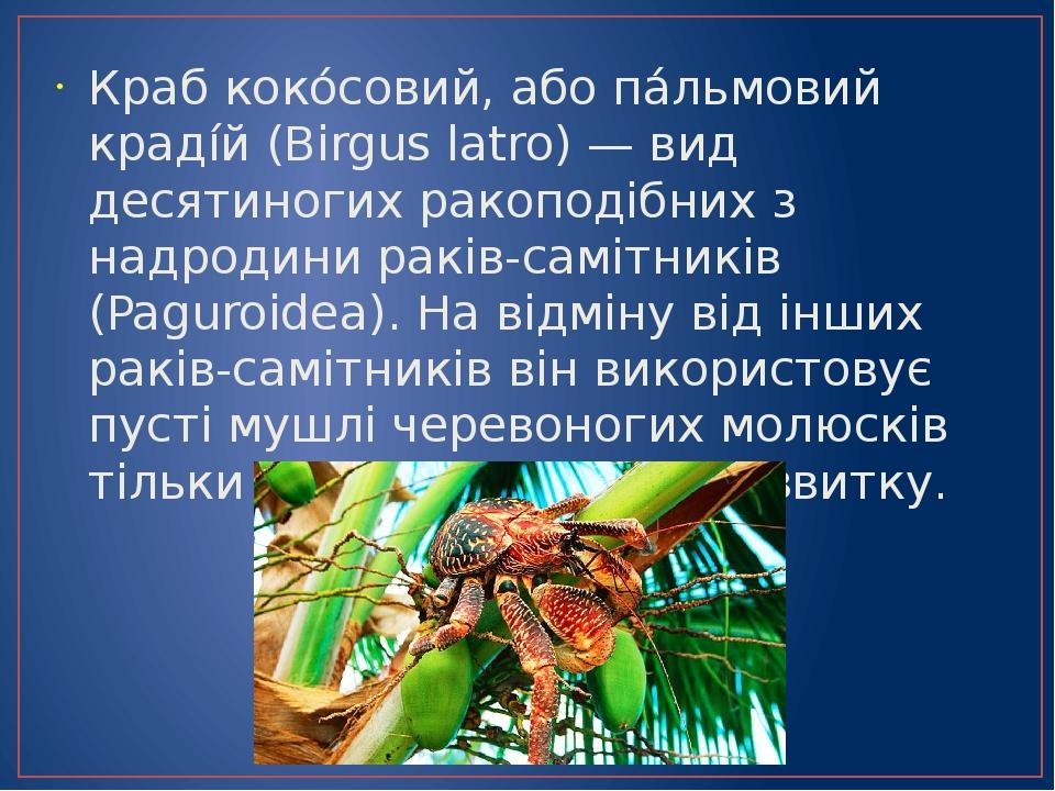 Краб коко́совий, або па́льмовий краді́й (Birgus latro) — вид десятиногих ракоподібних з надродини раків-самітників (Paguroidea). На відміну від інш...