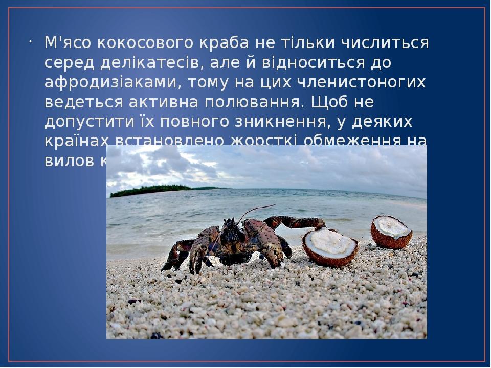 М'ясо кокосового краба не тільки числиться серед делікатесів, але й відноситься до афродизіаками, тому на цих членистоногих ведеться активна полюва...