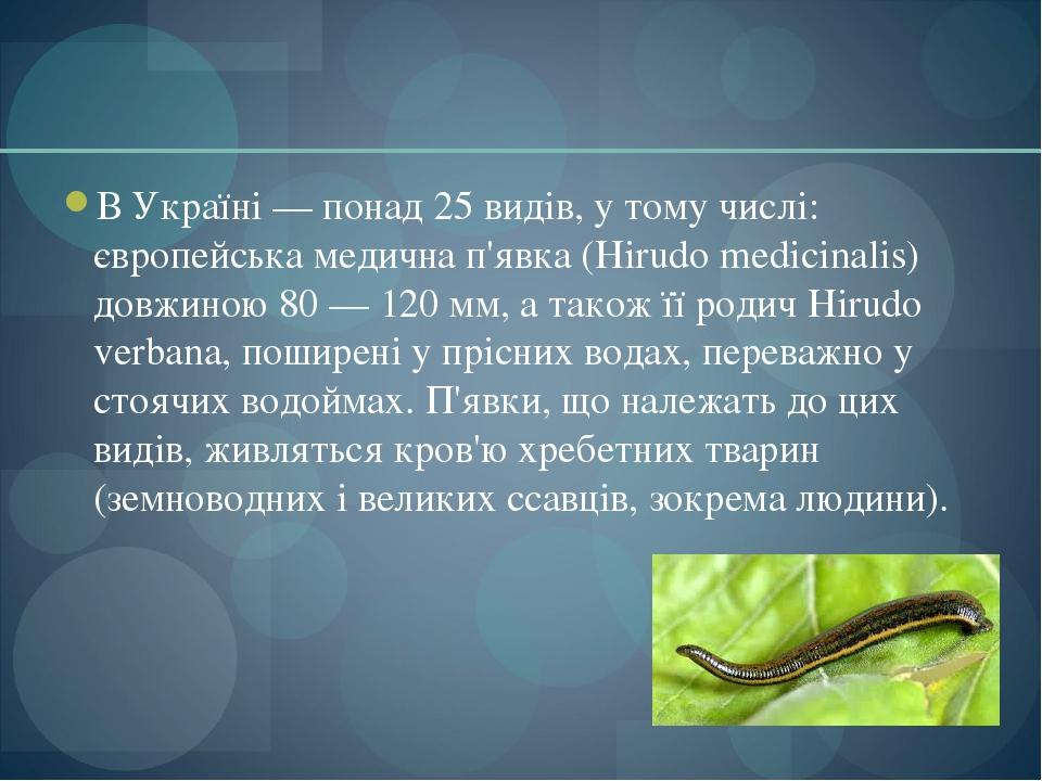 В Україні — понад 25 видів, у тому числі: європейська медична п'явка (Hirudo medicinalis) довжиною 80 — 120 мм, а також її родич Hirudo verbana, п...
