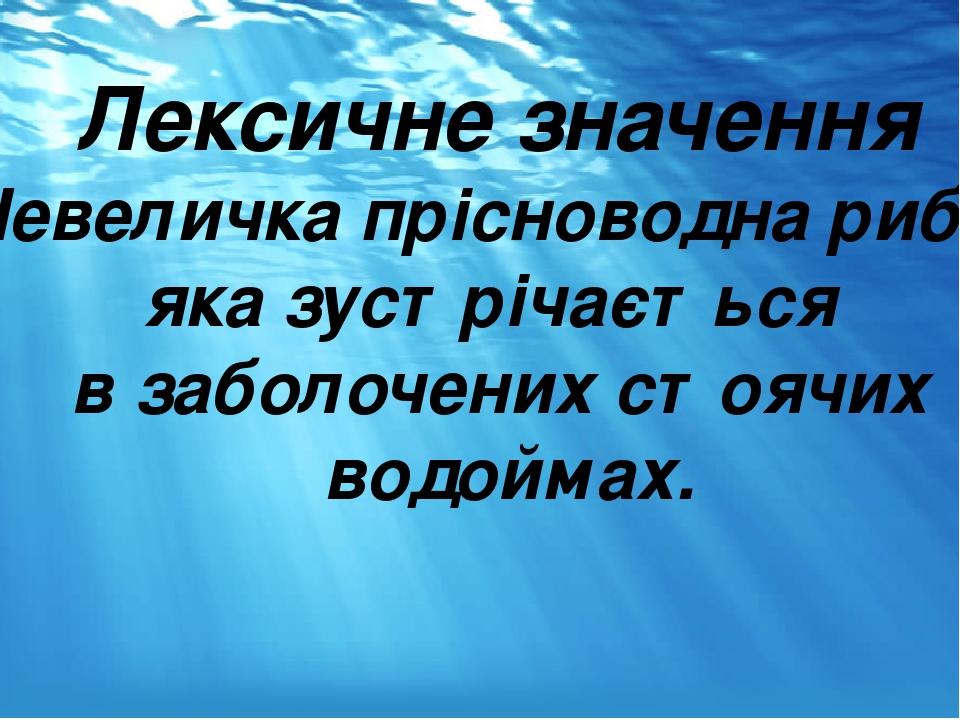 Лексичне значення Невеличка прісноводна риба, яка зустрічається в заболочених стоячих водоймах. .