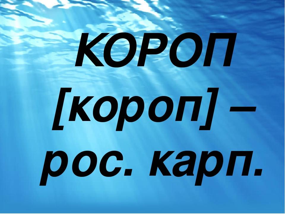 КОРОП [короп] – рос. карп.