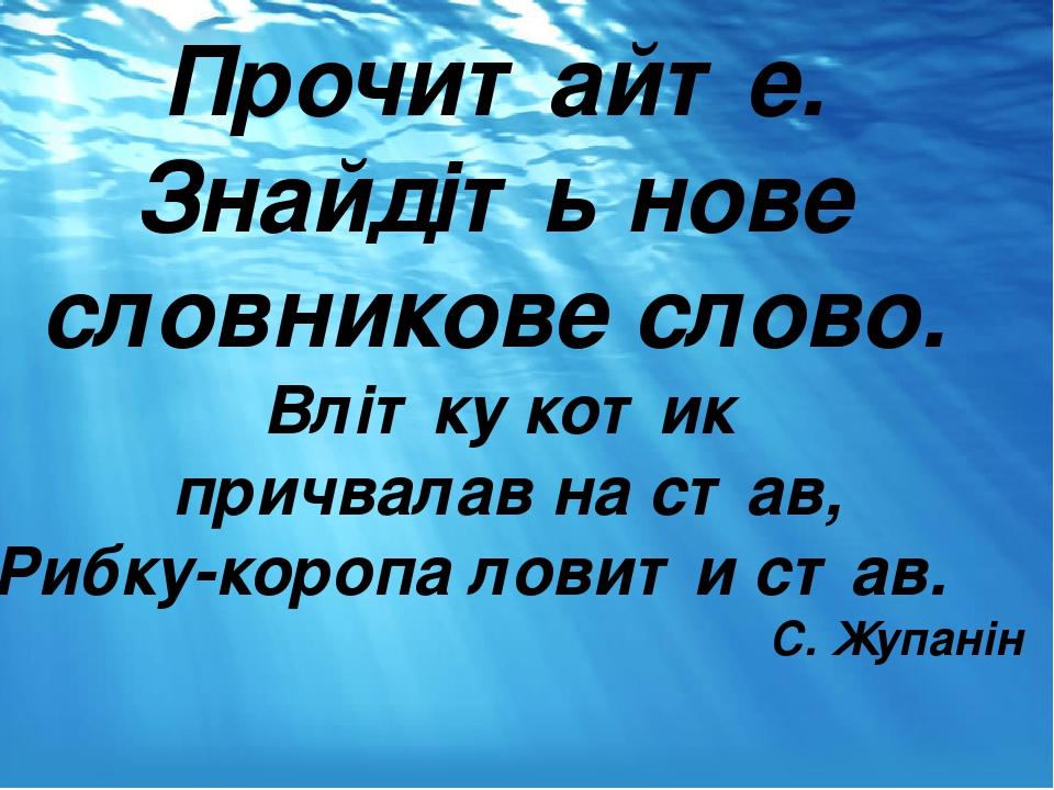 Прочитайте. Знайдіть нове словникове слово. Влітку котик причвалав на став, Рибку-коропа ловити став. С. Жупанін