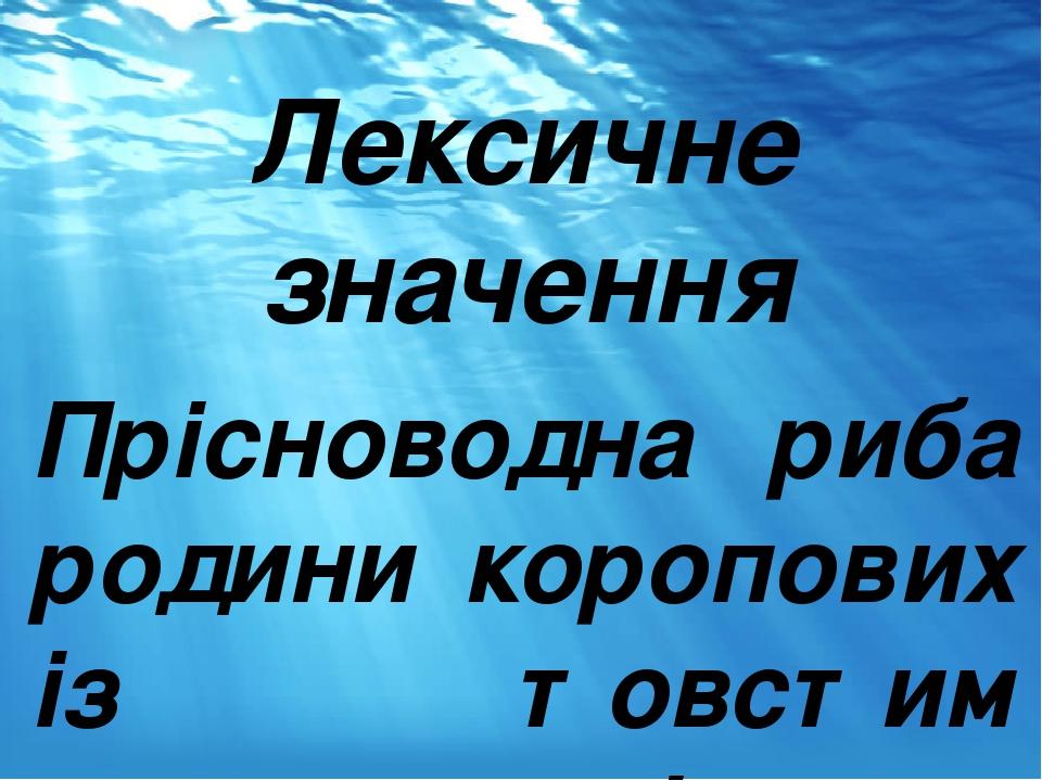 Лексичне значення Прісноводна риба родини коропових із товстим слизьким тілом.