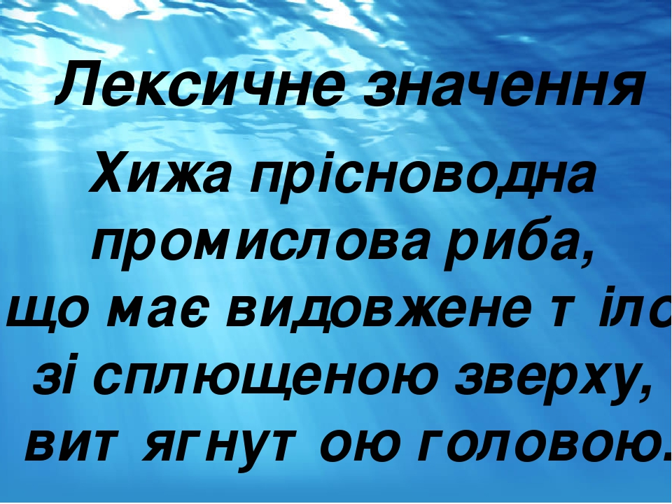 Лексичне значення Хижа прісноводна промислова риба, що має видовжене тіло зі сплющеною зверху, витягнутою головою.