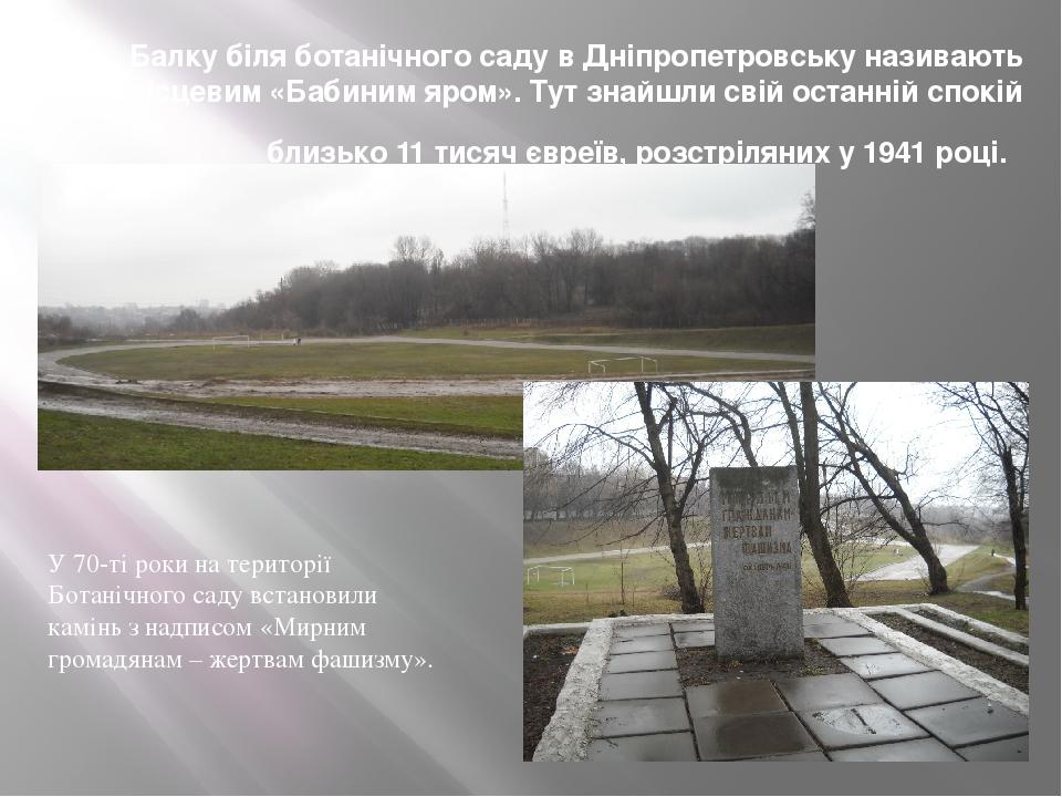 Балку біля ботанічного саду в Дніпропетровську називають місцевим «Бабиним яром». Тут знайшли свій останній спокій близько 11 тисяч євреїв, розстрі...
