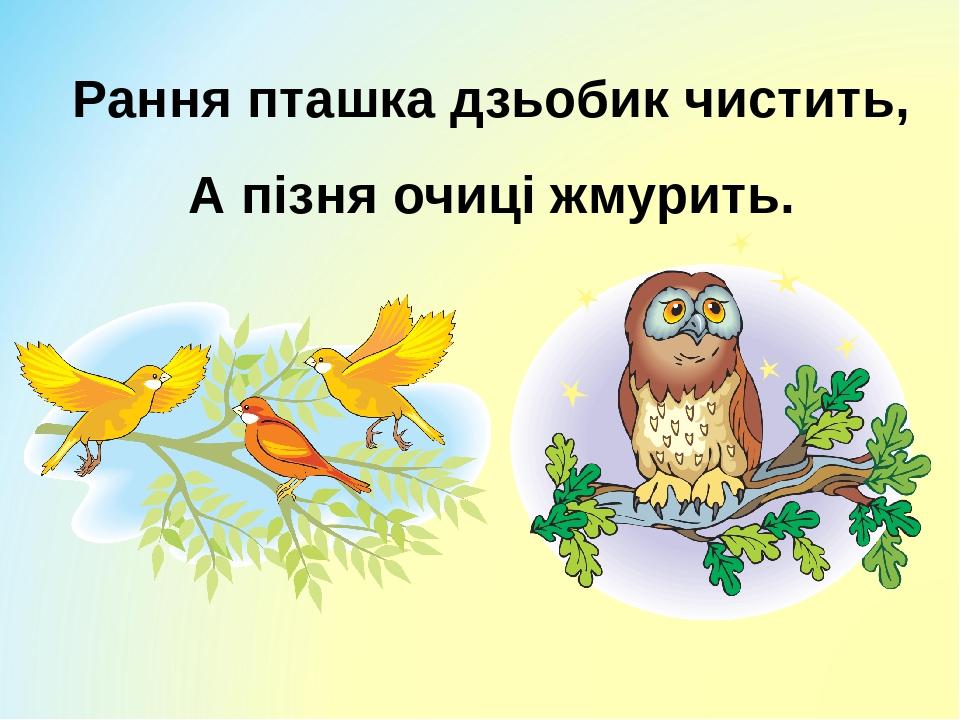 Рання пташка дзьобик чистить, А пізня очиці жмурить.