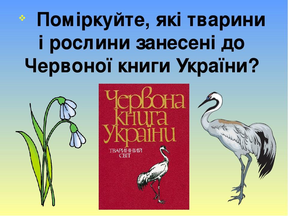 Поміркуйте, які тварини і рослини занесені до Червоної книги України?