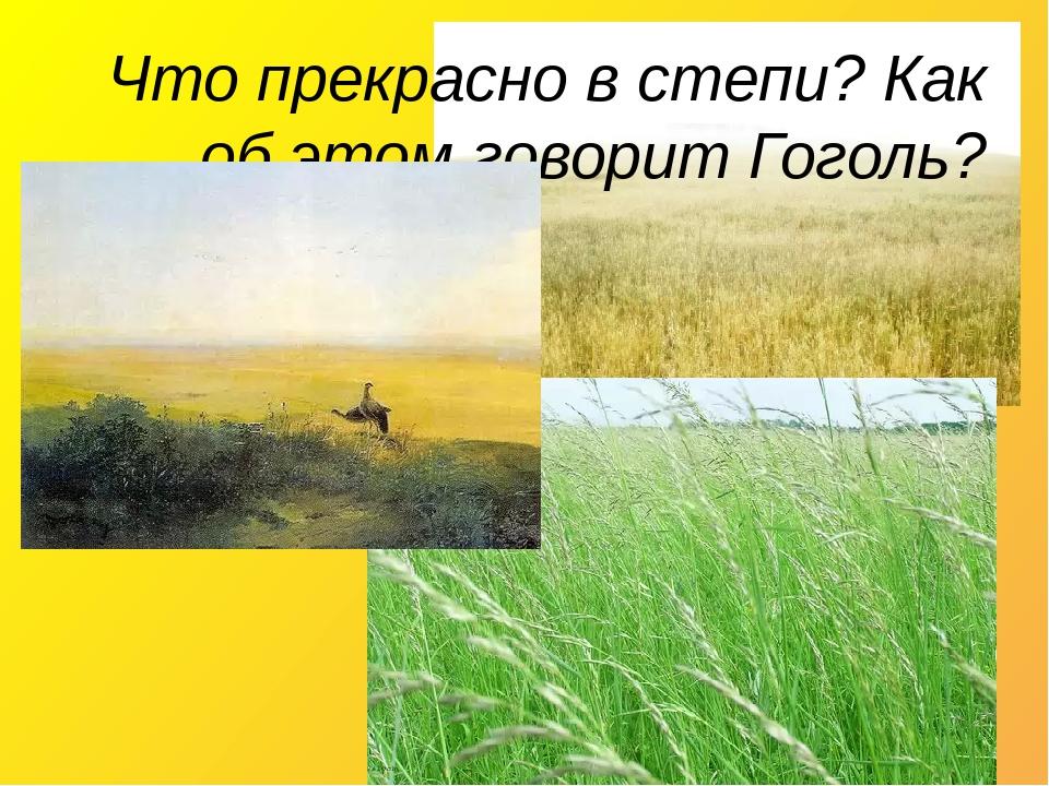 Что прекрасно в степи? Как об этом говорит Гоголь?