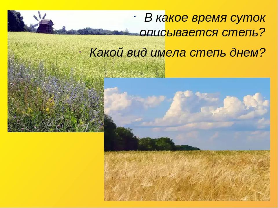 В какое время суток описывается степь? Какой вид имела степь днем?