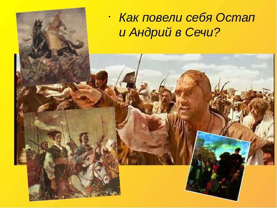 Как повели себя Остап и Андрий в Сечи?