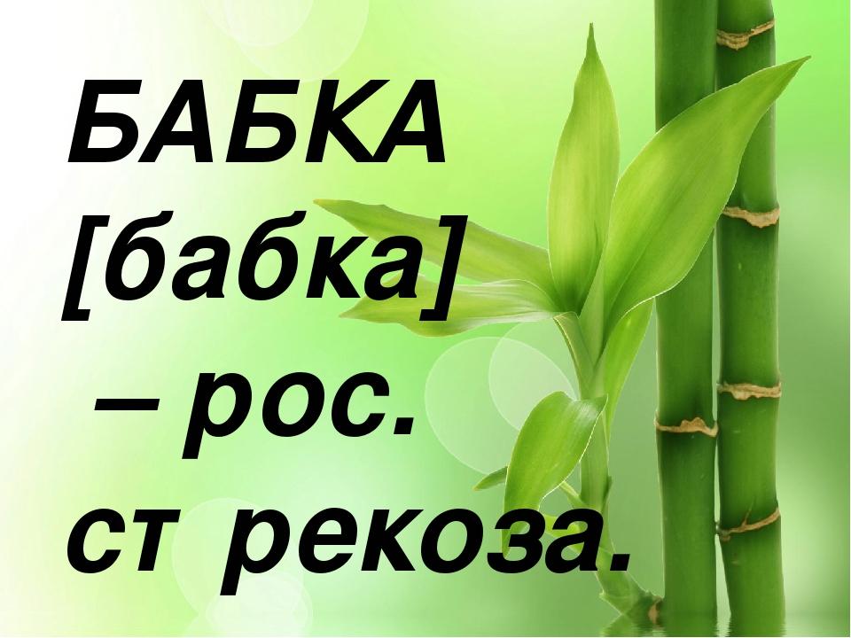 БАБКА [бабка] – рос. стрекоза.