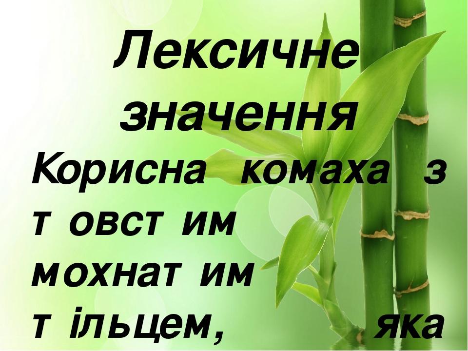 Лексичне значення Корисна комаха з товстим мохнатим тільцем, яка запилює квітки. .