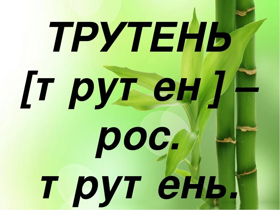 ТРУТЕНЬ [трутен′] – рос. трутень.