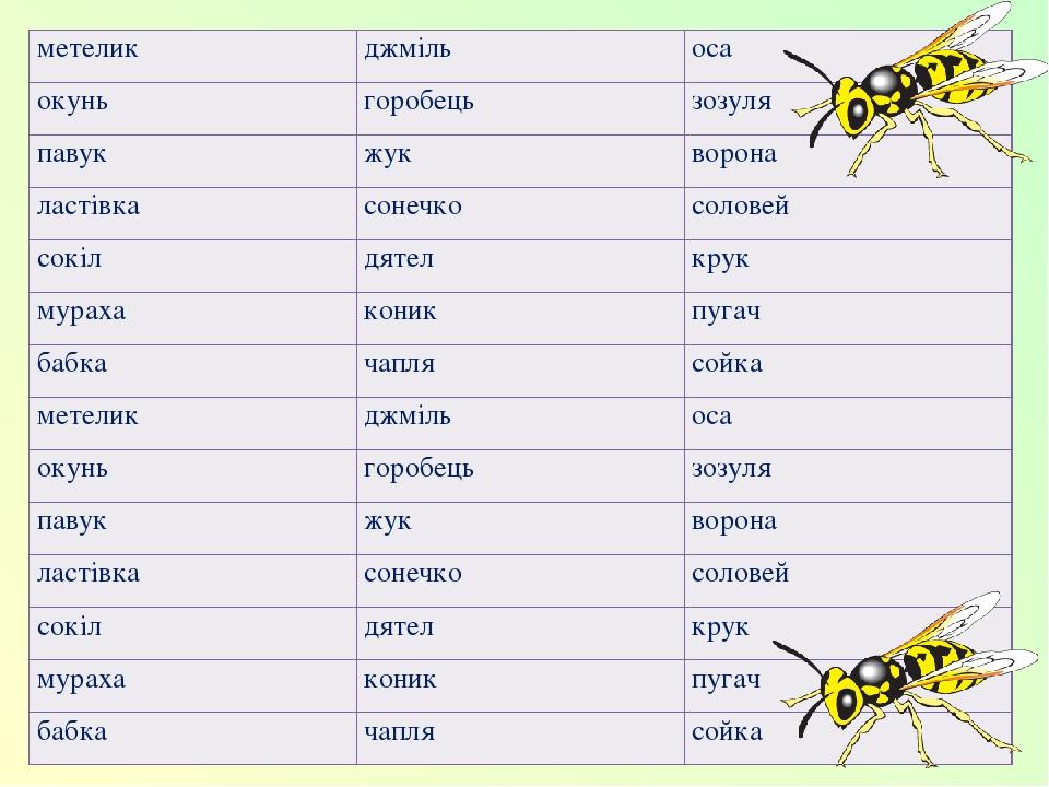 метелик джміль оса окунь горобець зозуля павук жук ворона ластівка сонечко соловей сокіл дятел крук мураха коник пугач бабка чапля сойка метелик дж...