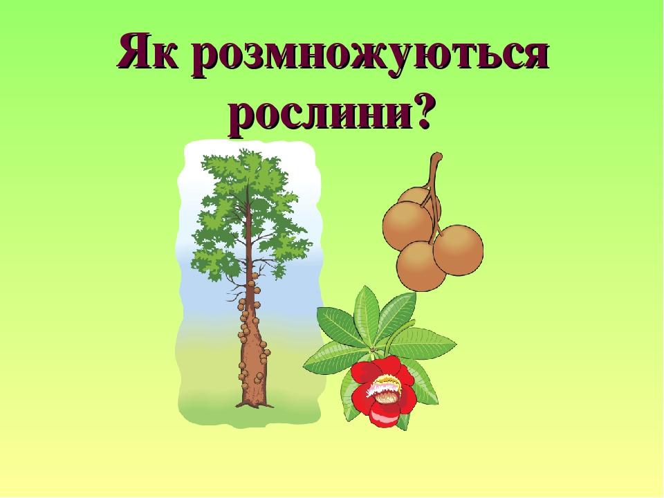 Як розмножуються рослини?