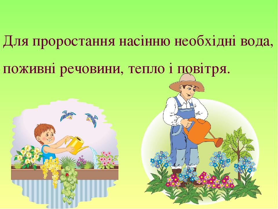 Для проростання насінню необхідні вода, поживні речовини, тепло і повітря.