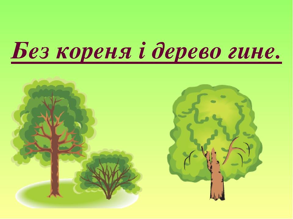 Без кореня і дерево гине.