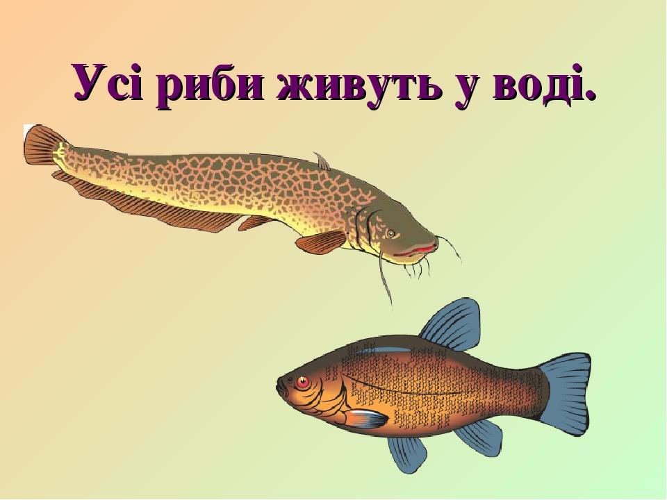 Усі риби живуть у воді.
