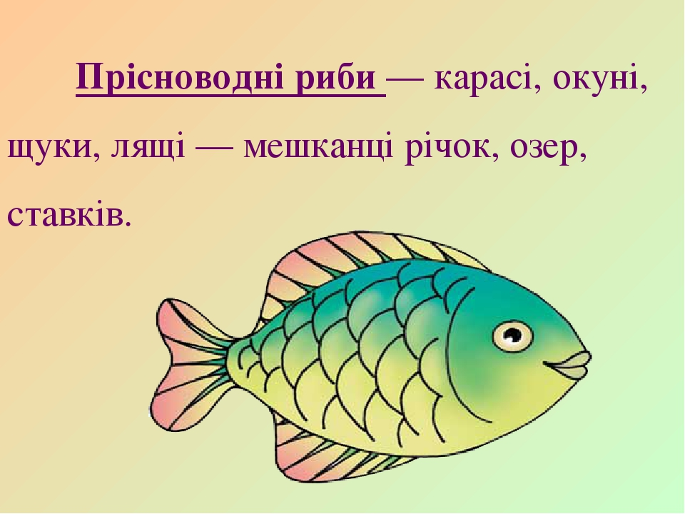 Прісноводні риби — карасі, окуні, щуки, лящі — мешканці річок, озер, ставків.