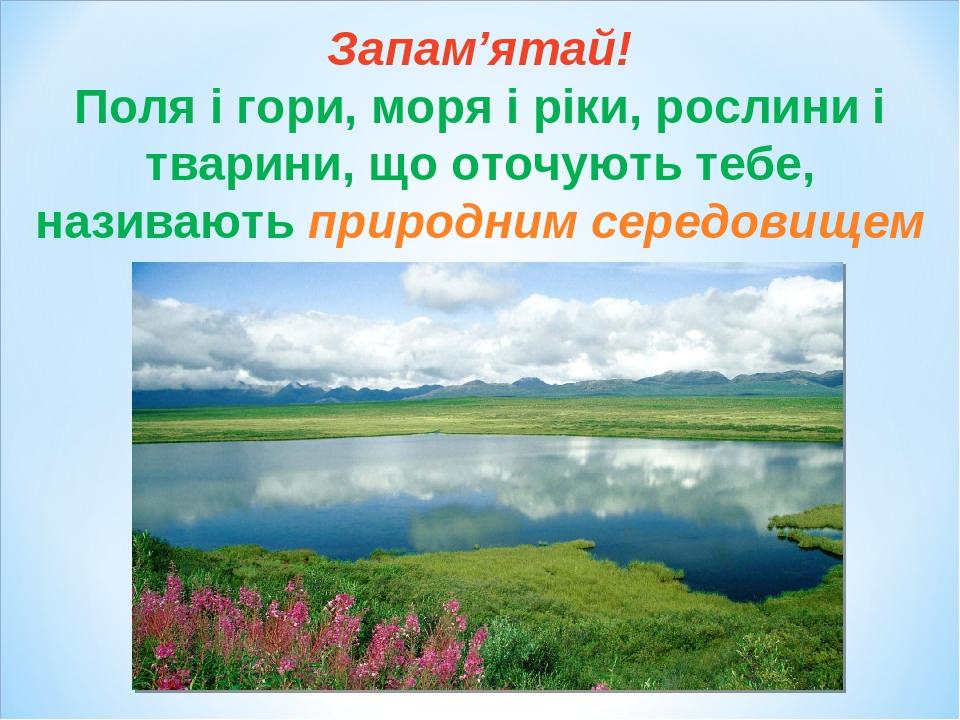 Запам'ятай! Поля і гори, моря і ріки, рослини і тварини, що оточують тебе, називають природним середовищем