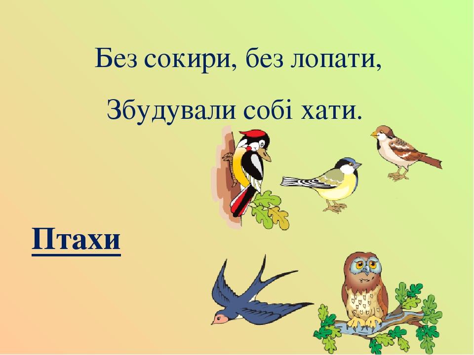 Без сокири, без лопати, Збудували собі хати. Птахи