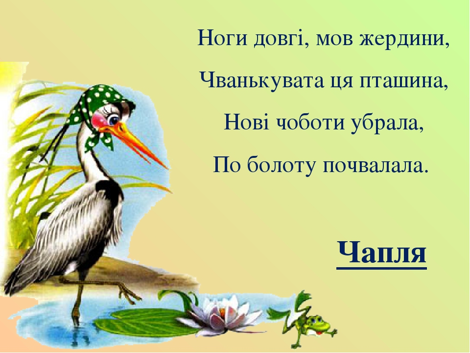 Ноги довгі, мов жердини, Чванькувата ця пташина, Нові чоботи убрала, По болоту почвалала. Чапля