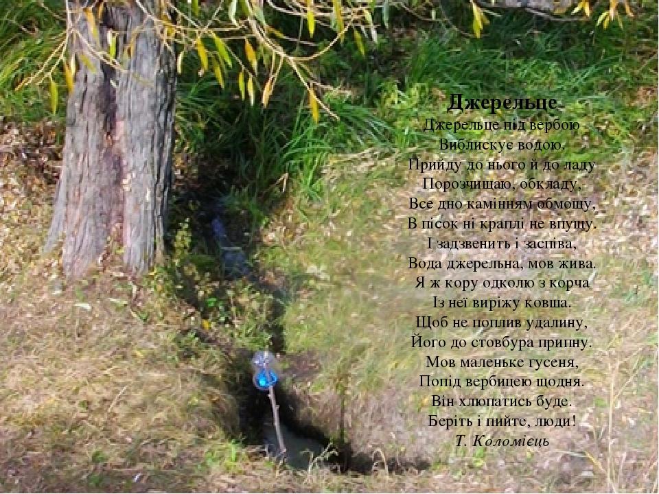 Джерельце Джерельце під вербою Виблискує водою. Прийду до нього й до ладу Порозчищаю, обкладу, Все дно камінням обмощу, В пісок ні краплі не впущу....