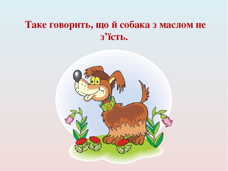 Таке говорить, що й собака з маслом не з'їсть.
