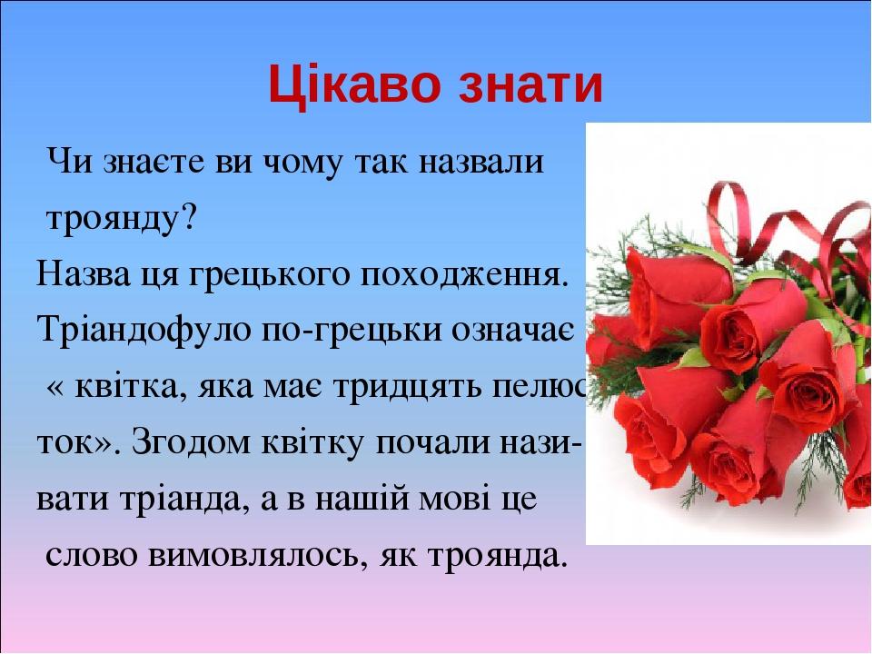Цікаво знати Чи знаєте ви чому так назвали троянду? Назва ця грецького походження. Тріандофуло по-грецьки означає « квітка, яка має тридцять пелюс-...